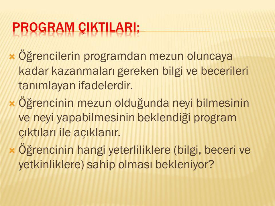 Program Yeterliliklerinin belirlenmesinde; Nasıl Bir Program .