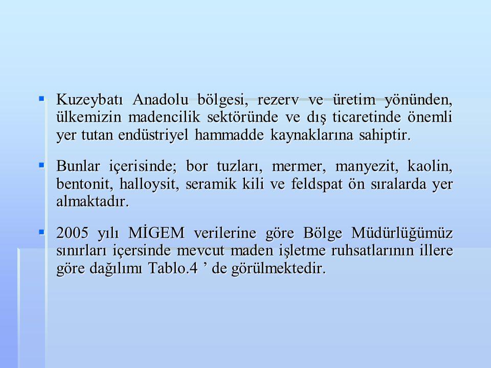  Kuzeybatı Anadolu bölgesi, rezerv ve üretim yönünden, ülkemizin madencilik sektöründe ve dış ticaretinde önemli yer tutan endüstriyel hammadde kayna