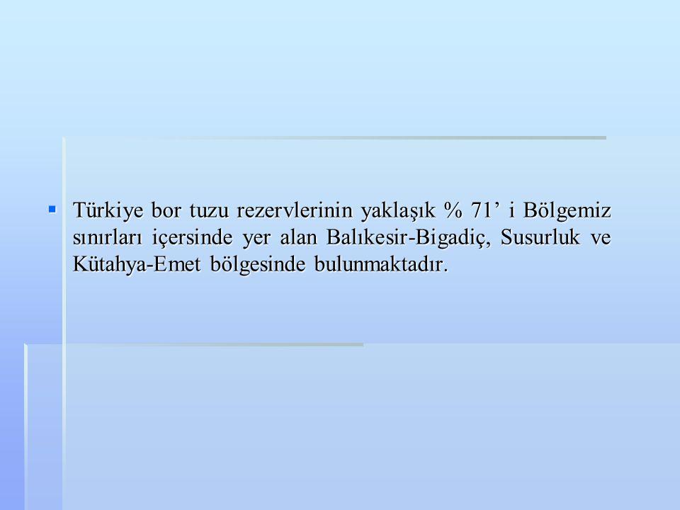  Türkiye bor tuzu rezervlerinin yaklaşık % 71' i Bölgemiz sınırları içersinde yer alan Balıkesir-Bigadiç, Susurluk ve Kütahya-Emet bölgesinde bulunma