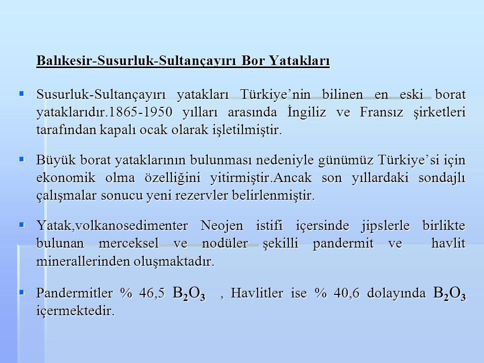 Balıkesir-Susurluk-Sultançayırı Bor Yatakları  Susurluk-Sultançayırı yatakları Türkiye'nin bilinen en eski borat yataklarıdır.1865-1950 yılları arası