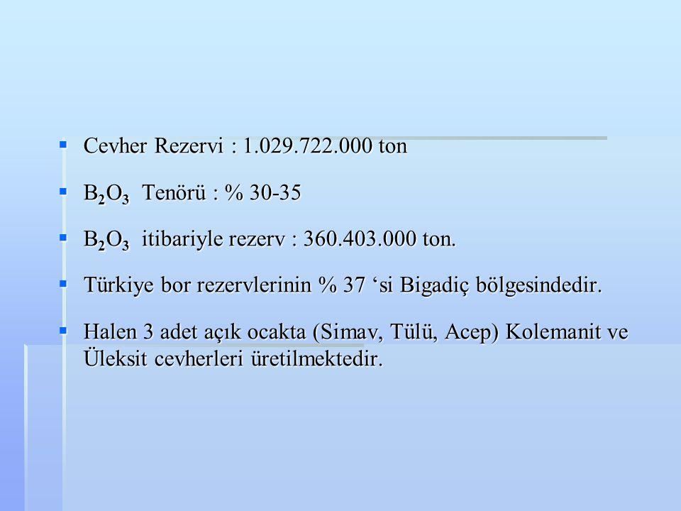  Cevher Rezervi : 1.029.722.000 ton  B 2 O 3 Tenörü : % 30-35  B 2 O 3 itibariyle rezerv : 360.403.000 ton.  Türkiye bor rezervlerinin % 37 'si Bi