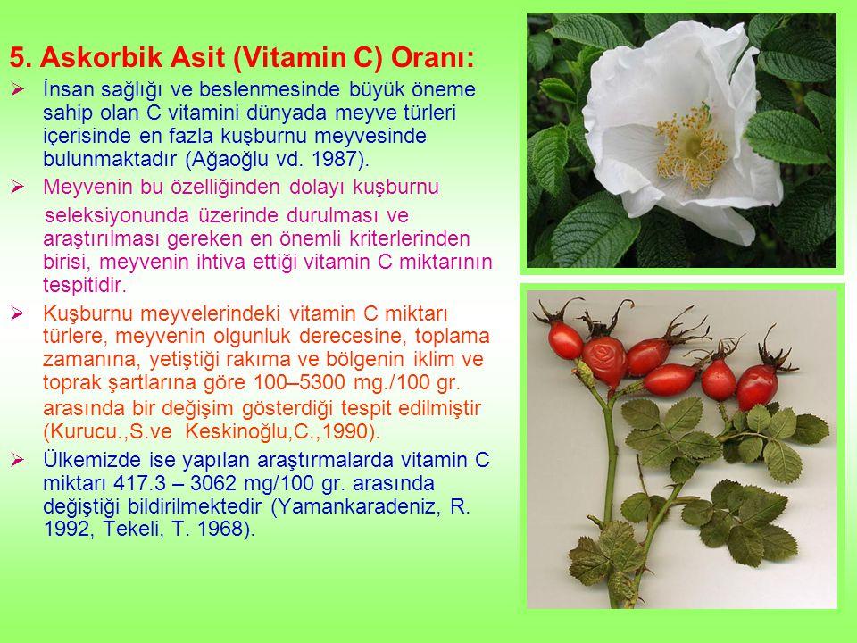 5. Askorbik Asit (Vitamin C) Oranı:  İnsan sağlığı ve beslenmesinde büyük öneme sahip olan C vitamini dünyada meyve türleri içerisinde en fazla kuşbu
