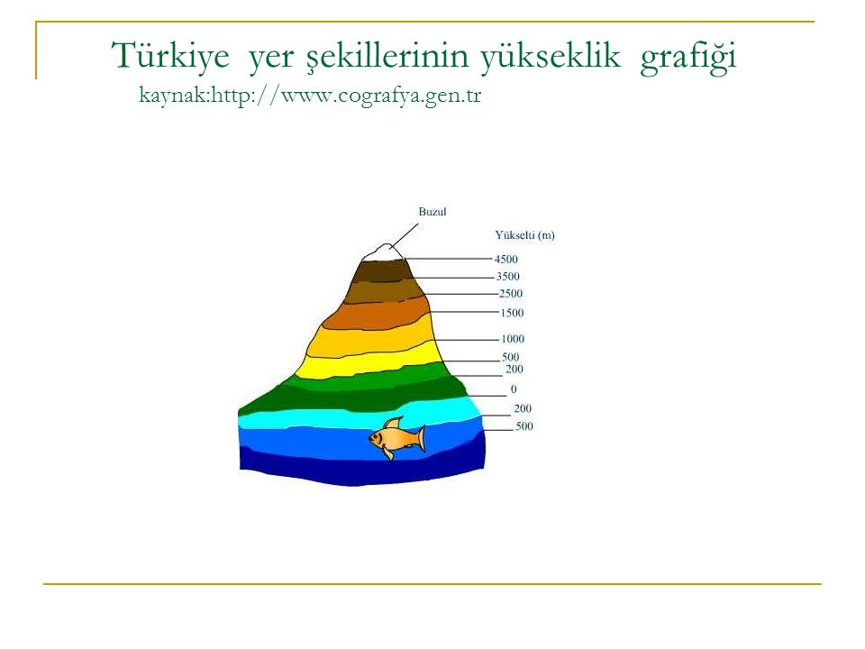 Türkiye yer şekillerinin yükseklik grafiği kaynak:http://www.cografya.gen.tr