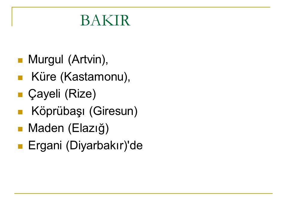 BAKIR Murgul (Artvin), Küre (Kastamonu), Çayeli (Rize) Köprübaşı (Giresun) Maden (Elazığ) Ergani (Diyarbakır)'de