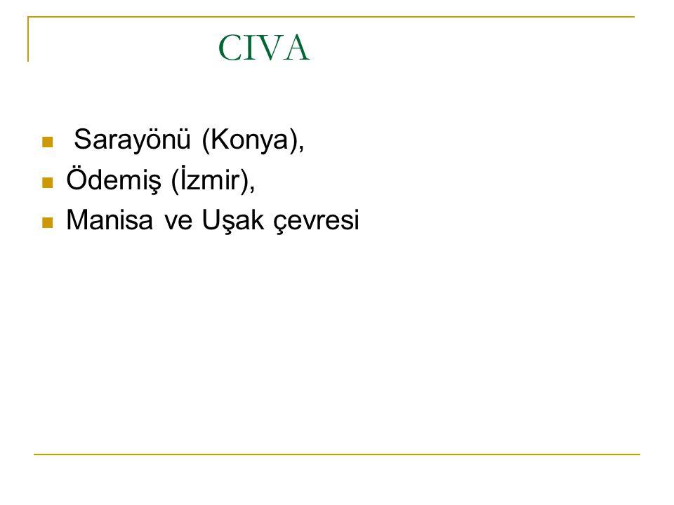 CIVA Sarayönü (Konya), Ödemiş (İzmir), Manisa ve Uşak çevresi