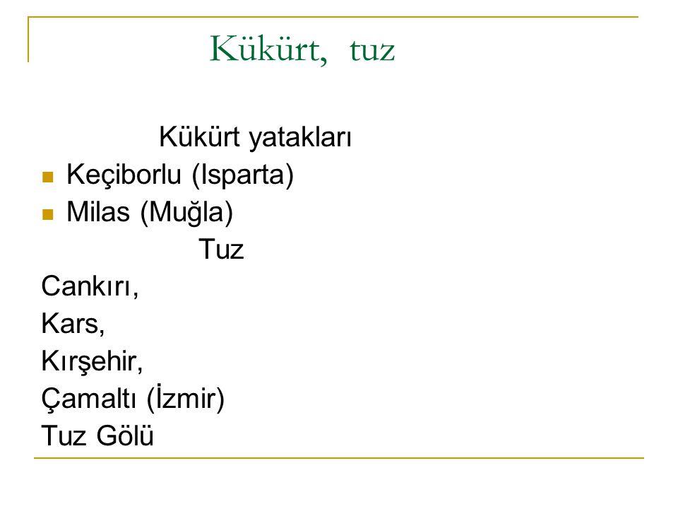 Kükürt, tuz Kükürt yatakları Keçiborlu (Isparta) Milas (Muğla) Tuz Cankırı, Kars, Kırşehir, Çamaltı (İzmir) Tuz Gölü