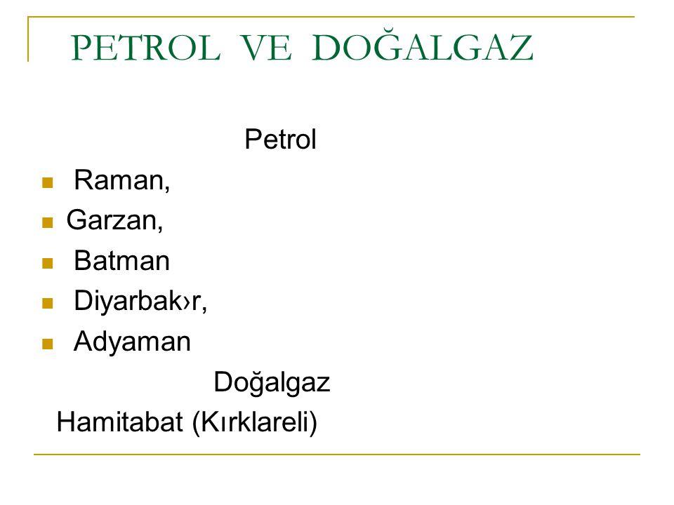 PETROL VE DOĞALGAZ Petrol Raman, Garzan, Batman Diyarbak›r, Adyaman Doğalgaz Hamitabat (Kırklareli)