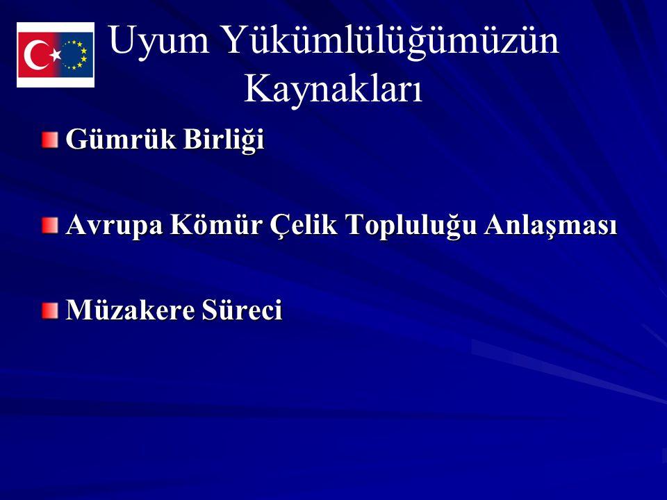 1/95 Sayılı Ortaklık Konseyi Kararı Madde 32: AT üyesi Ülkelerin veya Türkiye nin belli kuruluşları kayırarak veya belli ürünlerin üretimini özendirmek suretiyle rekabeti bozan veya bozma tehdidi oluşturan ve devlet kaynaklarından yaptıkları her türlü yardım Toplulukla Türkiye arasındaki ticareti etkilediği ölçüde, Gümrük Birliğinin düzgün işleyişi ile uyumlu değildir.