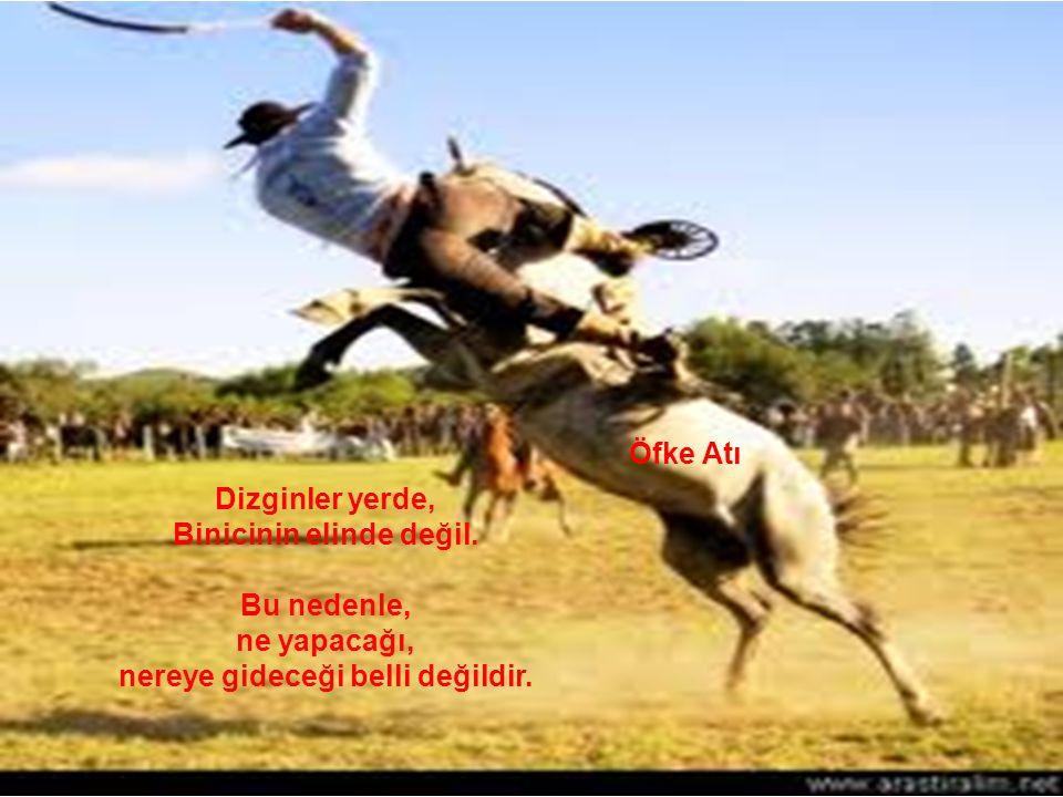 Öfke Atı Dizginler yerde, Binicinin elinde değil.