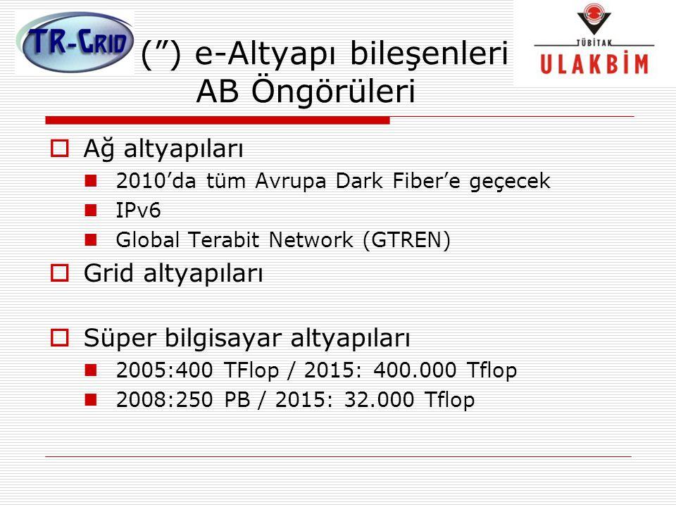 """("""") e-Altyapı bileşenleri AB Öngörüleri  Ağ altyapıları 2010'da tüm Avrupa Dark Fiber'e geçecek IPv6 Global Terabit Network (GTREN)  Grid altyapılar"""