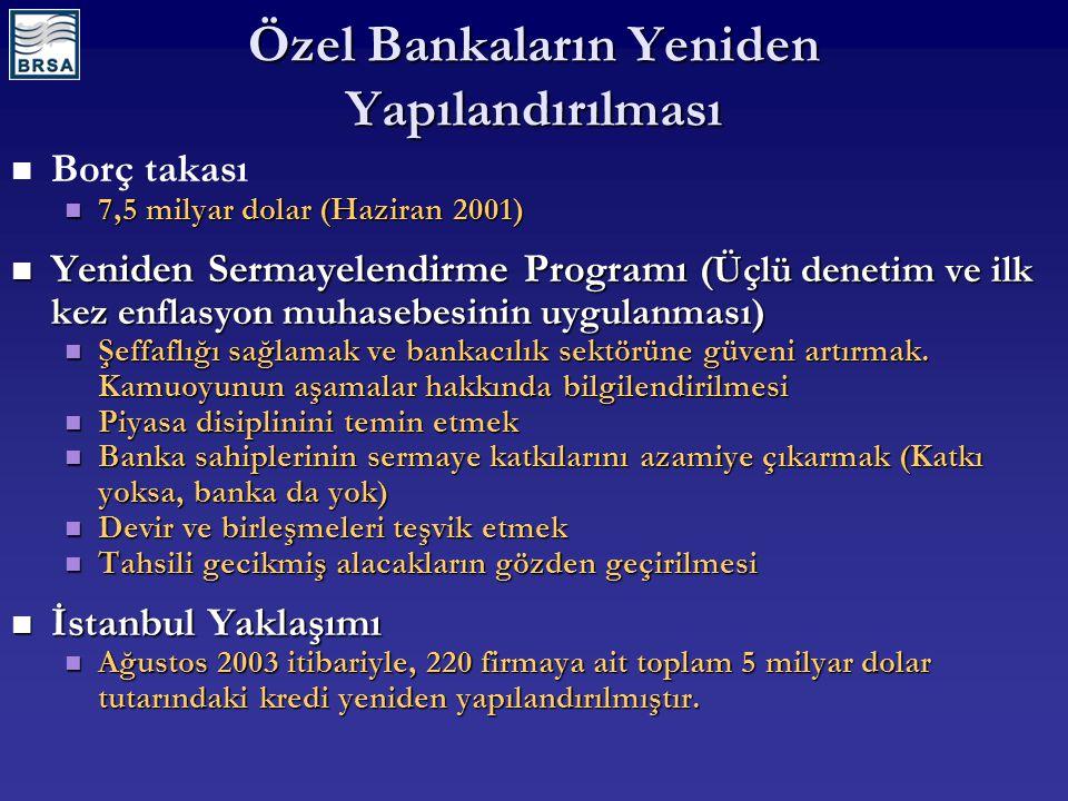 Özel Bankaların Yeniden Yapılandırılması Borç takası 7,5 milyar dolar (Haziran 2001) 7,5 milyar dolar (Haziran 2001) Yeniden Sermayelendirme Programı