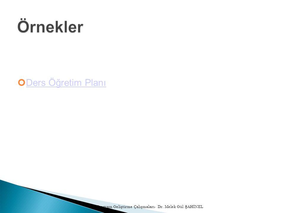 Ders Öğretim Planı Program Geliştirme Çalışmaları- Dr. Melek Gül ŞAHİNEL
