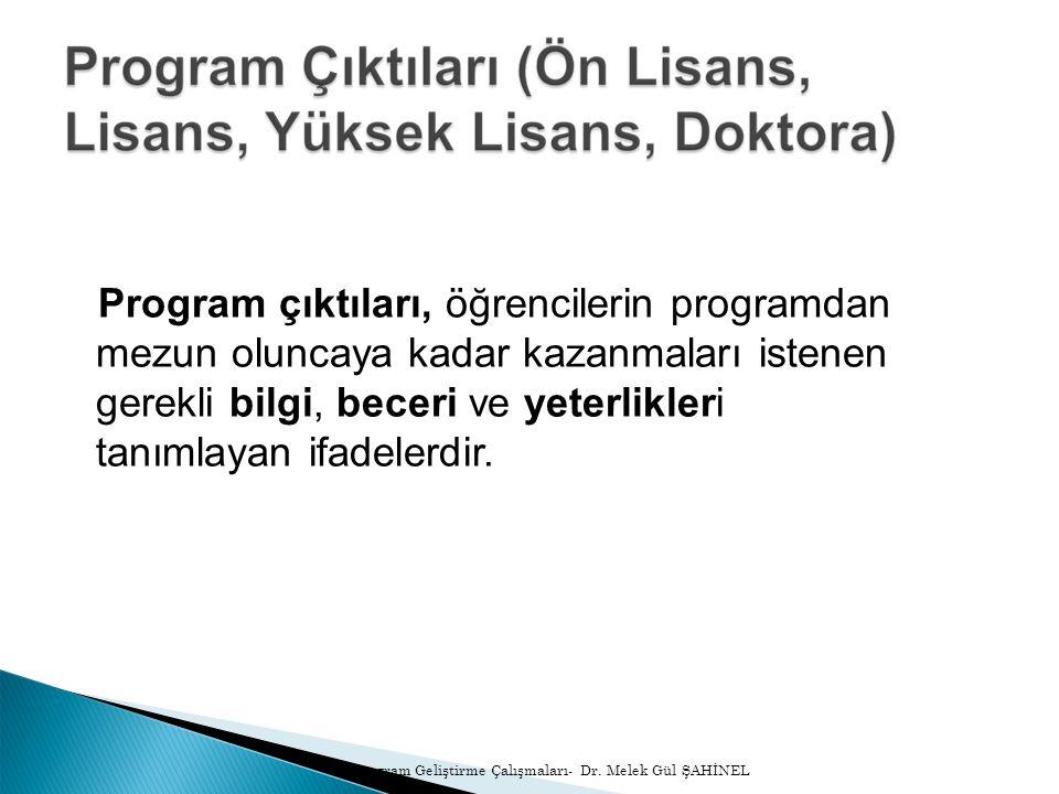 30/11/10 Program Geliştirme Çalışmaları- Dr.