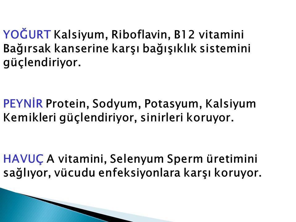 YOĞURT Kalsiyum, Riboflavin, B12 vitamini Bağırsak kanserine karşı bağışıklık sistemini güçlendiriyor. PEYNİR Protein, Sodyum, Potasyum, Kalsiyum Kemi