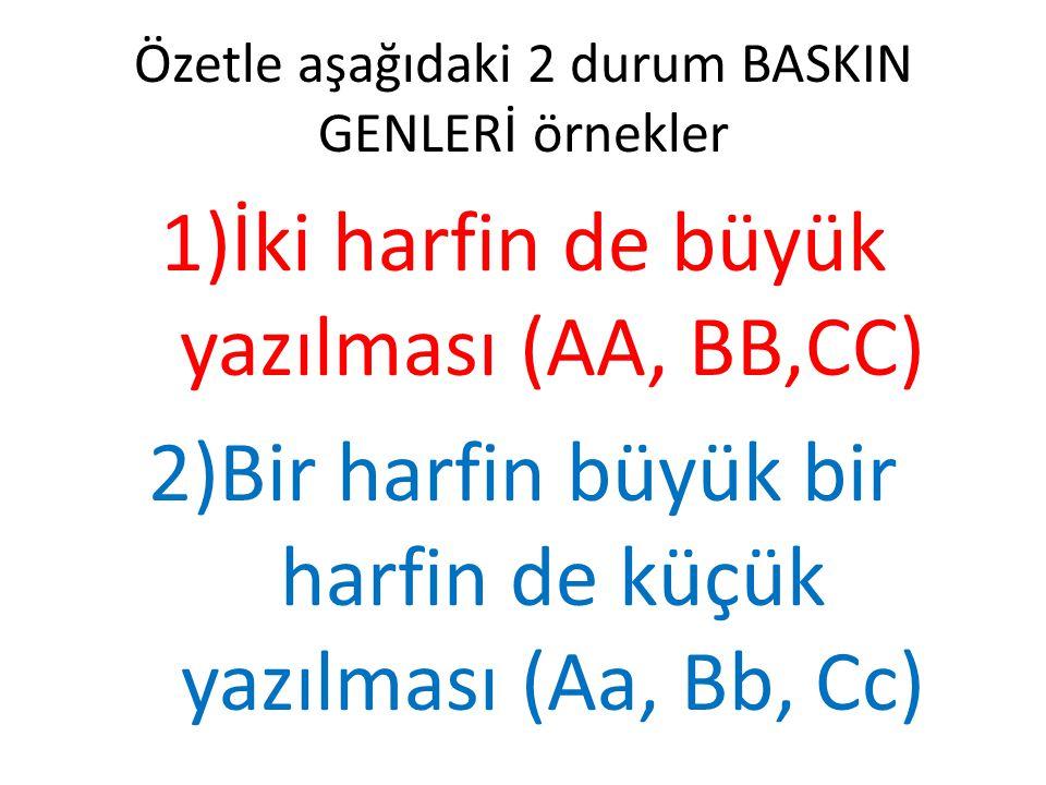 Özetle aşağıdaki 2 durum BASKIN GENLERİ örnekler 1)İki harfin de büyük yazılması (AA, BB,CC) 2)Bir harfin büyük bir harfin de küçük yazılması (Aa, Bb,