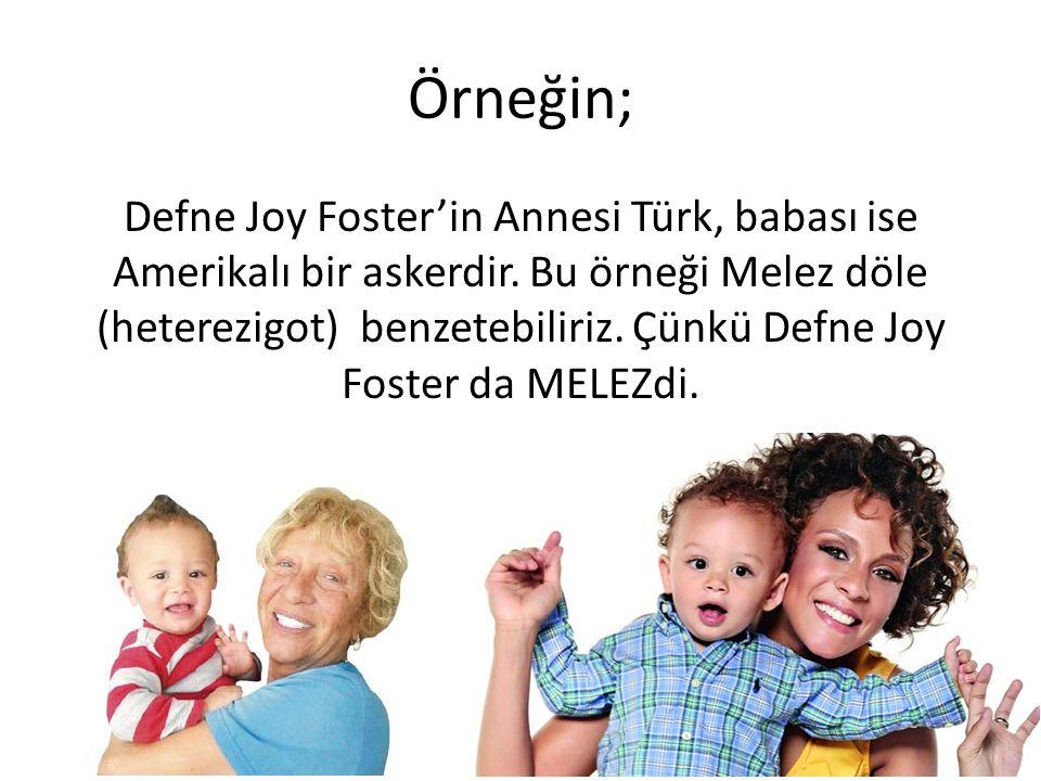 Örneğin; Defne Joy Foster'in Annesi Türk, babası ise Amerikalı bir askerdir. Bu örneği Melez döle (heterezigot) benzetebiliriz. Çünkü Defne Joy Foster