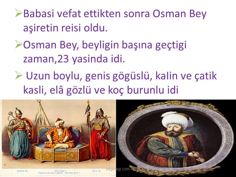  Babasi vefat ettikten sonra Osman Bey aşiretin reisi oldu.  Osman Bey, beyligin başına geçtigi zaman,23 yasinda idi.  Uzun boylu, genis gögüslü, k