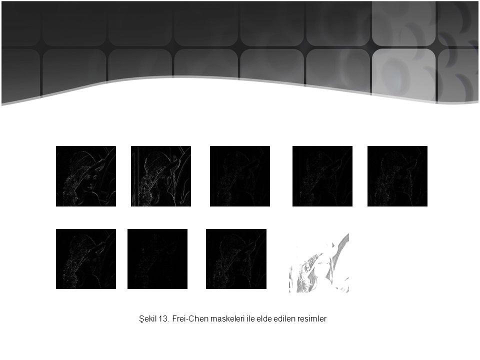 Şekil 13. Frei-Chen maskeleri ile elde edilen resimler