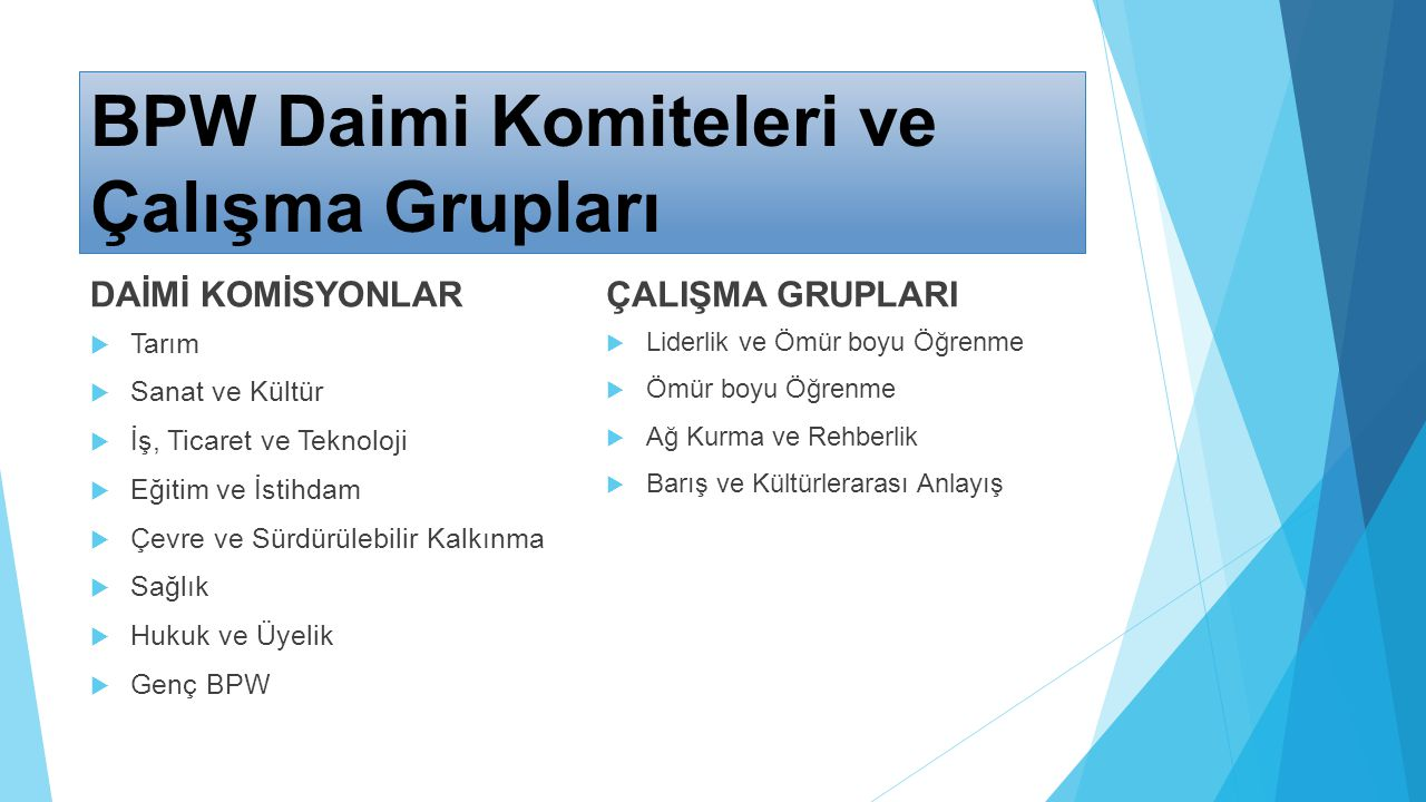 Solution Time for Employment Problem (STEP) - CFCU/TR0604.01/01, The Promotion of Civil Society Dialogue between EU and Turkey Programme within the scope of Youth Initiatives for Dialogue component to the Programme.