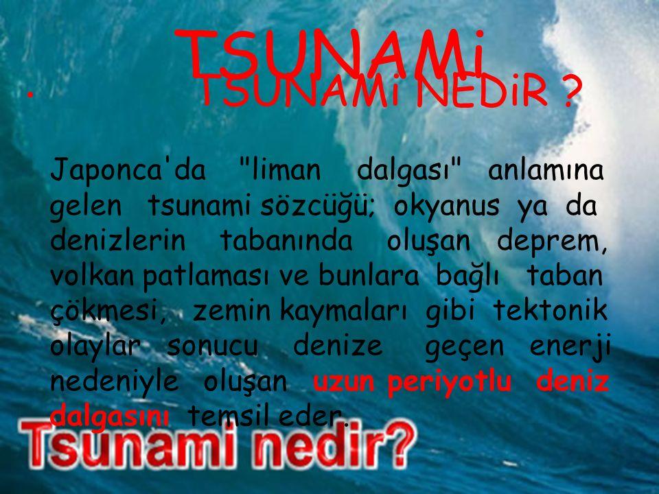 TSUNAMi NEDiR .