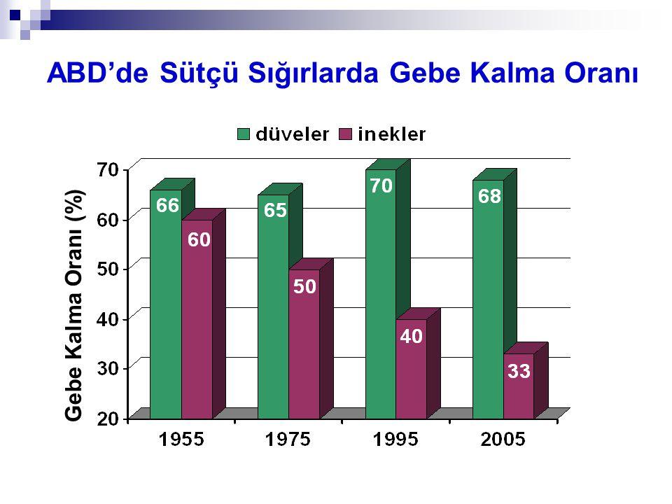 16 x %50 = 8 %20'si 8 Adet, yani toplam boş inek sayısının %20'si Boş inek sayısı (40) x %20 = 8