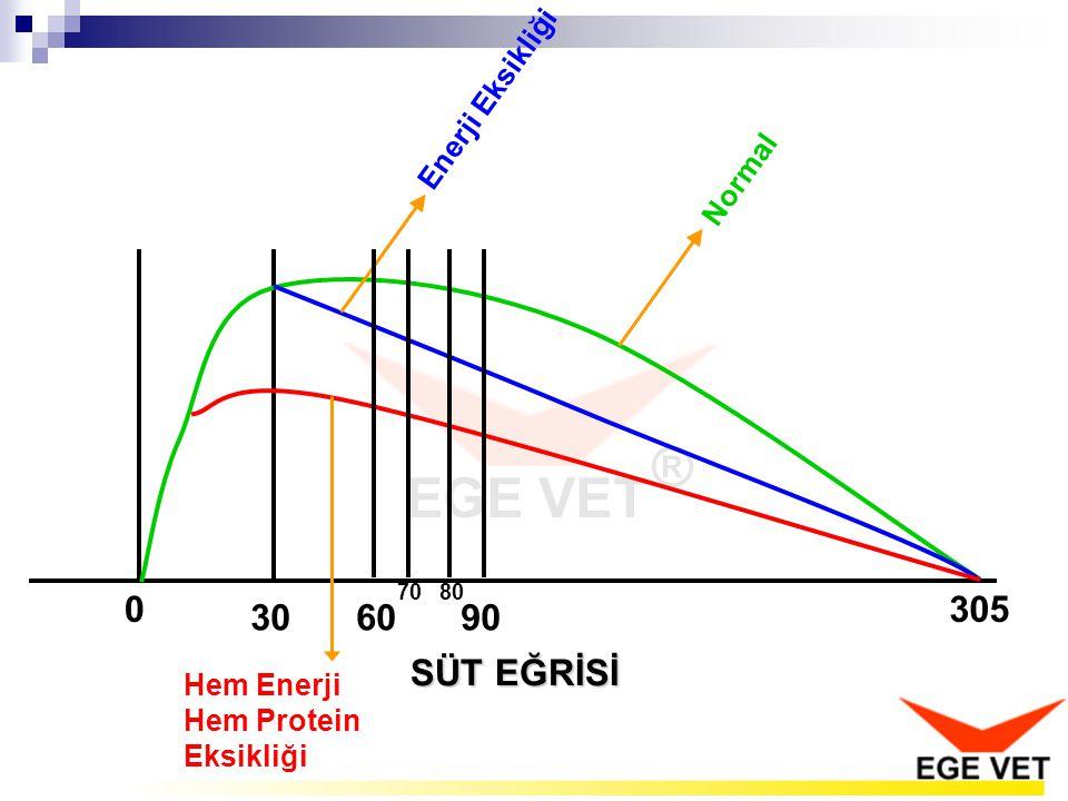 SÜT EĞRİSİ 0 30 305 Enerji Eksikliği Normal Hem Enerji Hem Protein Eksikliği 6090 7080