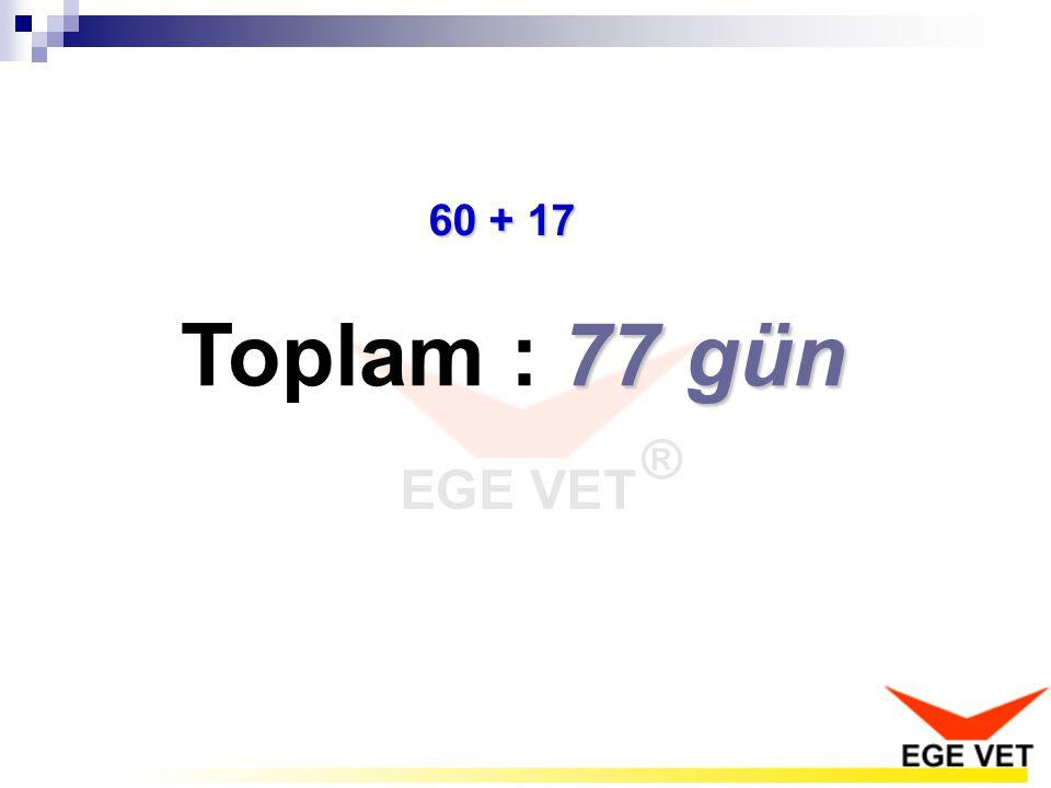 77 gün Toplam : 77 gün 60 + 17