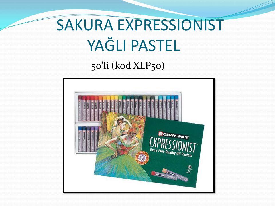 Sakura Expressionist Yağlı Pastelle Yapılan Çalışmalar