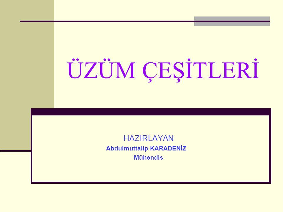 ÜZÜM ÇEŞİTLERİ HAZIRLAYAN Abdulmuttalip KARADENİZ Mühendis
