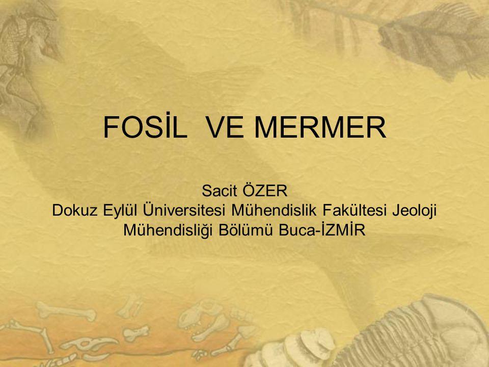 Bartın Bej Mermer: Karacabük-Safranbolu/Yığlıca Köyü Litoloji v e Özellikleri Erken Paleosen-Orta Eosen yaşlı Bartın Bej mermeri litolojik olarak fosilli kireçtaşı şeklinde tanımlanır.