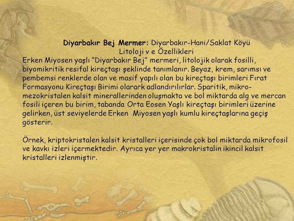 """Diyarbakır Bej Mermer: Diyarbakır-Hani/Saklat Köyü Litoloji v e Özellikleri Erken Miyosen yaşlı """"Diyarbakır Bej"""" mermeri, litolojik olarak fosilli, bi"""