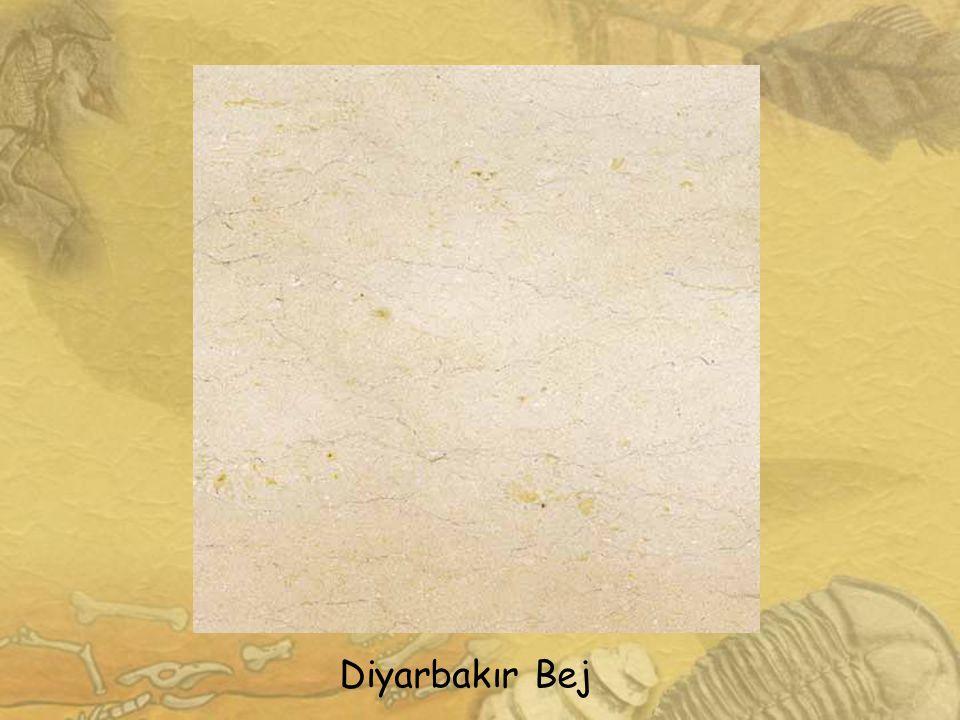 Diyarbakır Bej