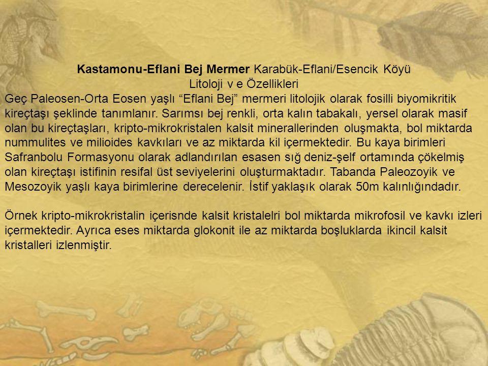 """Kastamonu-Eflani Bej Mermer Karabük-Eflani/Esencik Köyü Litoloji v e Özellikleri Geç Paleosen-Orta Eosen yaşlı """"Eflani Bej"""" mermeri litolojik olarak f"""