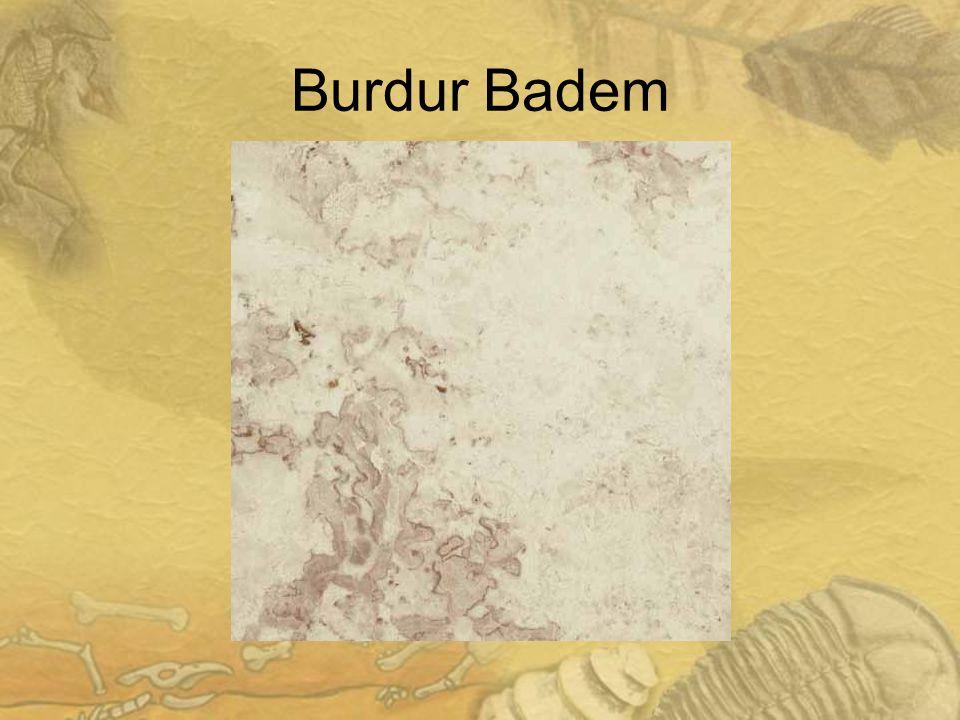 Burdur Badem