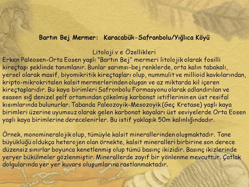 """Bartın Bej Mermer: Karacabük-Safranbolu/Yığlıca Köyü Litoloji v e Özellikleri Erken Paleosen-Orta Eosen yaşlı """"Bartın Bej"""" mermeri litolojik olarak fo"""