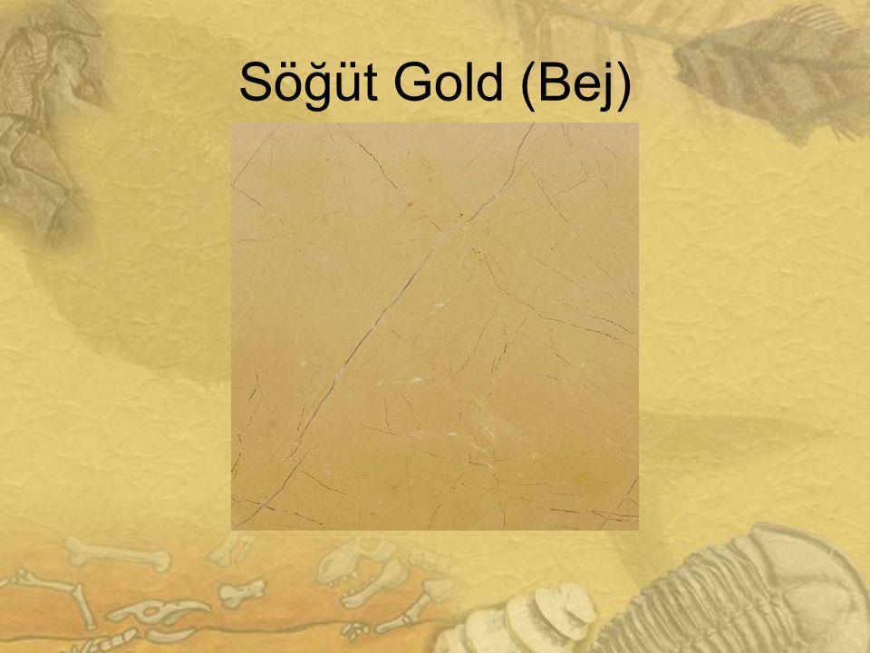 Söğüt Gold (Bej)