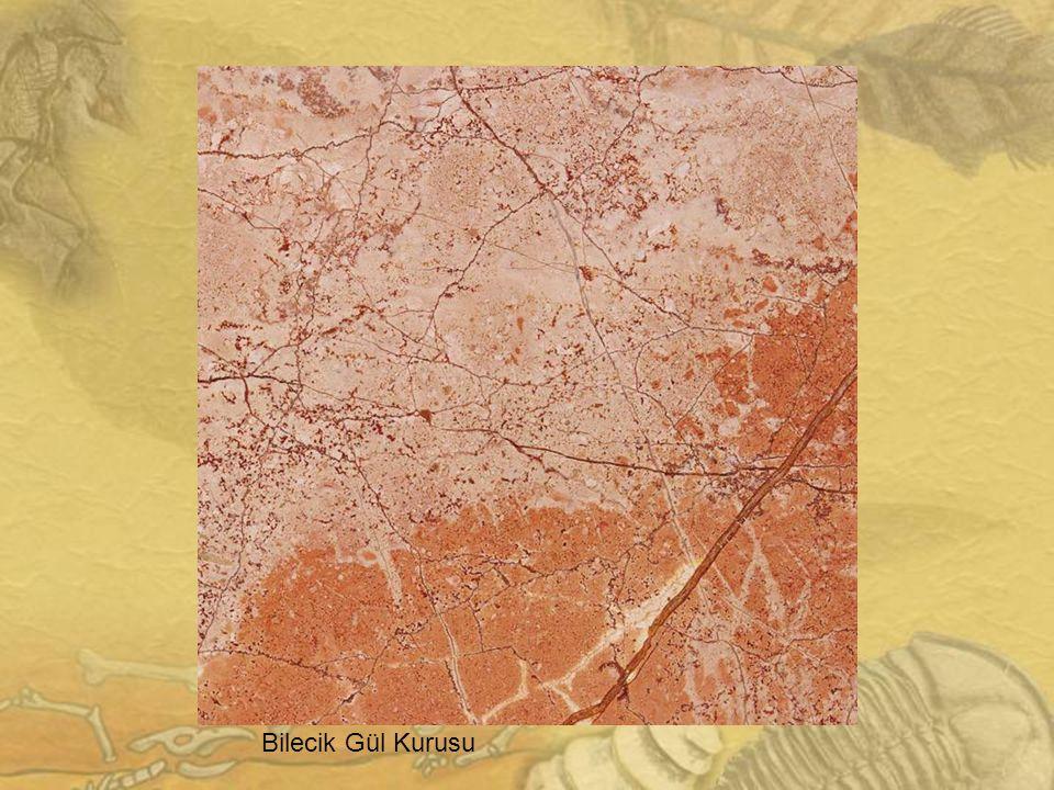 Burdur Bej Mermer: Burdur-Karamanlı/Bademli Köyü Litoloji v e Özellikleri Orta Triyas-Liyas yaşlı Burdur bej mermeri litolojik olarak fosilli rekristalize kireçtaşı şeklinde tanımlanır.