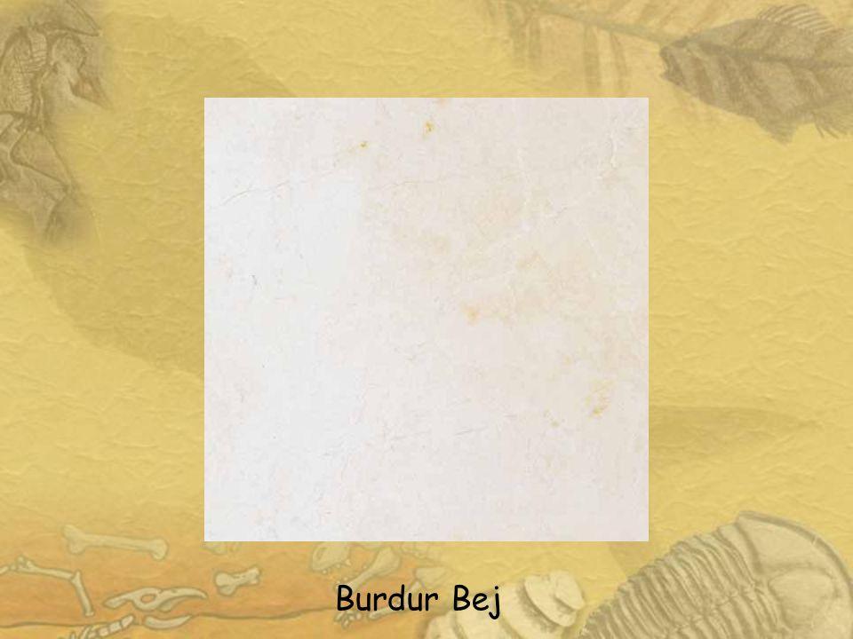 Bursa Bej Mermer: Bursa Söğütalan/Killik İncirlipınar-Körekem Köyleri Litoloji v e Özellikleri Alt Kretase (Beriasiyen-Valanjiniyen) Bursa Bej mermeri litolojik olarak fosilli, biyomikritik kireçtaşı olarak tanımlanır.