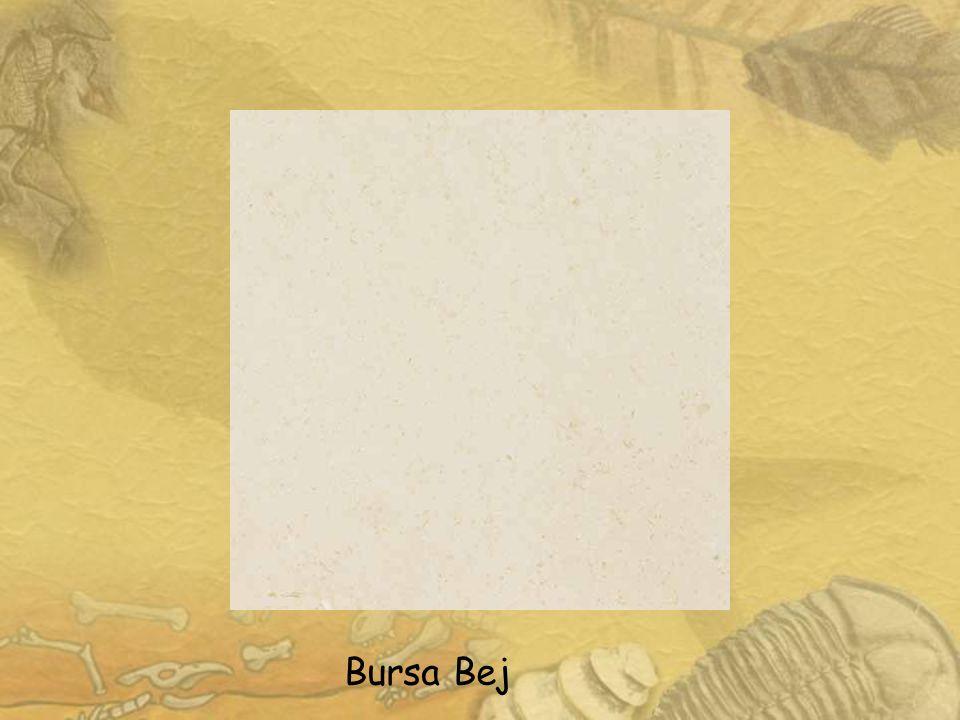 Diyarbakır Bej Mermer: Diyarbakır-Hani/Saklat Köyü Litoloji v e Özellikleri Erken Miyosen yaşlı Diyarbakır Bej mermeri, litolojik olarak fosilli, biyomikritik resifal kireçtaşı şeklinde tanımlanır.