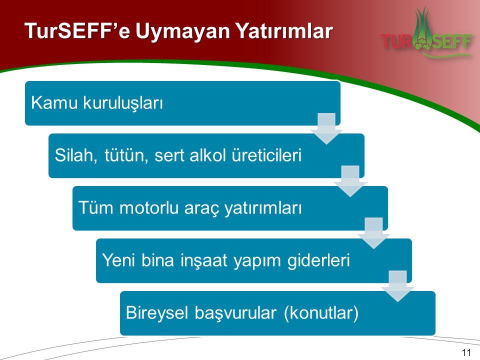 11 Kamu kuruluşlarıSilah, tütün, sert alkol üreticileriTüm motorlu araç yatırımlarıYeni bina inşaat yapım giderleriBireysel başvurular (konutlar) TurSEFF'e Uymayan Yatırımlar