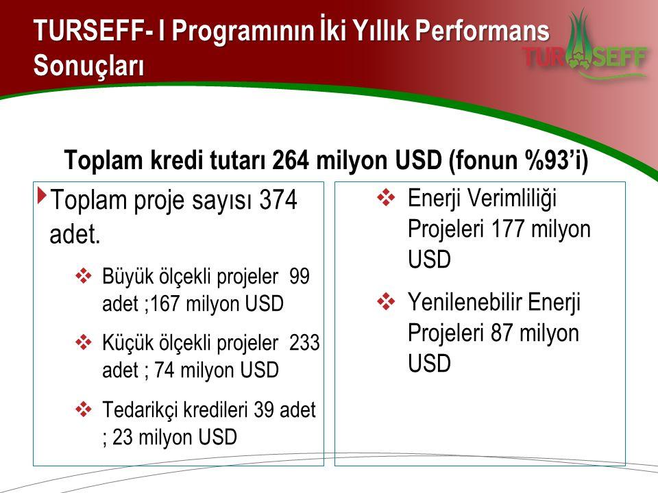 TURSEFF- I Programının İki Yıllık Performans Sonuçları Toplam kredi tutarı 264 milyon USD (fonun %93'i) ‣ Toplam proje sayısı 374 adet.  Büyük ölçekl