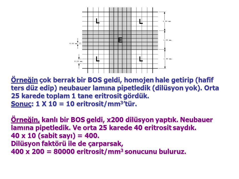 LL L L E Örneğin çok berrak bir BOS geldi, homojen hale getirip (hafif ters düz edip) neubauer lamına pipetledik (dilüsyon yok). Orta 25 karede toplam