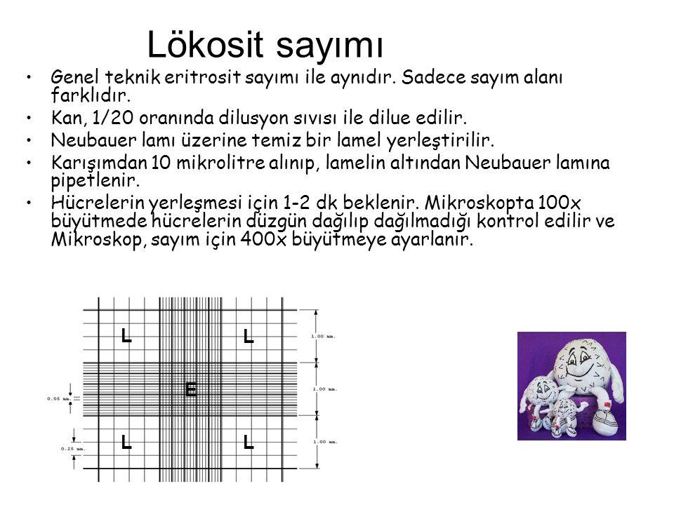 Lökosit sayımı Genel teknik eritrosit sayımı ile aynıdır. Sadece sayım alanı farklıdır. Kan, 1/20 oranında dilusyon sıvısı ile dilue edilir. Neubauer