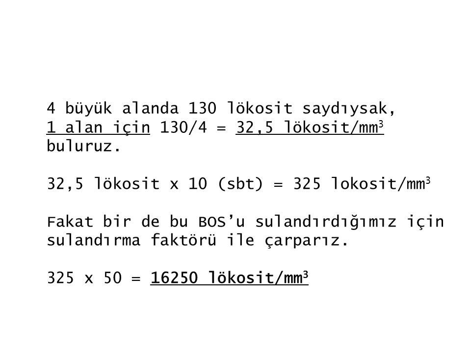 4 büyük alanda 130 lökosit saydıysak, 1 alan için 130/4 = 32,5 lökosit/mm 3 buluruz. 32,5 lökosit x 10 (sbt) = 325 lokosit/mm 3 Fakat bir de bu BOS'u