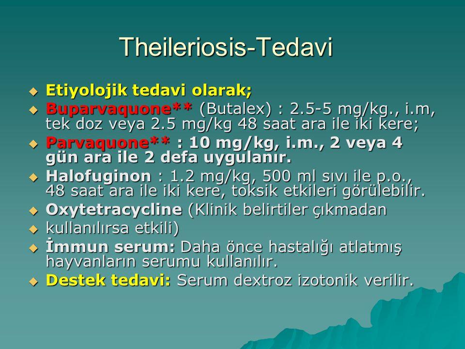 Theileriosis-Tedavi  Etiyolojik tedavi olarak;  Buparvaquone** (Butalex) : 2.5-5 mg/kg., i.m, tek doz veya 2.5 mg/kg 48 saat ara ile iki kere;  Par