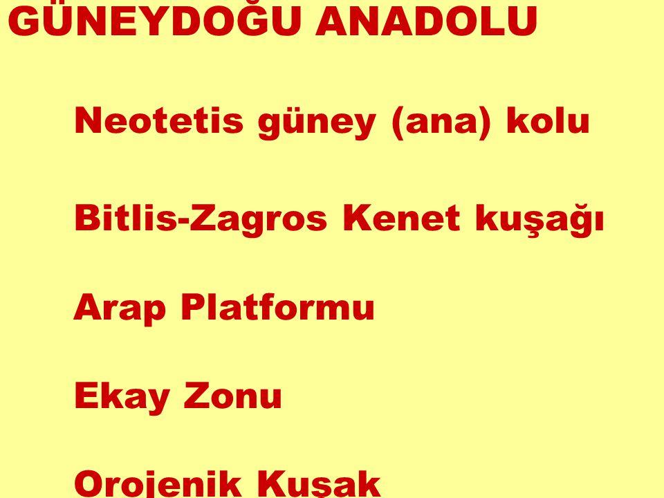 GÜNEYDOĞU ANADOLU Neotetis güney (ana) kolu Bitlis-Zagros Kenet kuşağı Arap Platformu Ekay Zonu Orojenik Kuşak