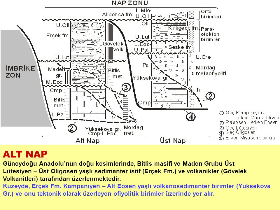 ALT NAP Güneydoğu Anadolu'nun doğu kesimlerinde, Bitlis masifi ve Maden Grubu Üst Lütesiyen – Üst Oligosen yaşlı sedimanter istif (Erçek Fm.) ve volka