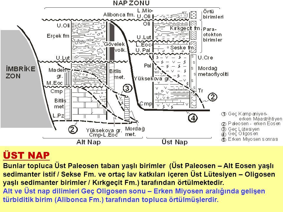 ÜST NAP Bunlar topluca Üst Paleosen taban yaşlı birimler (Üst Paleosen – Alt Eosen yaşlı sedimanter istif / Sekse Fm. ve ortaç lav katkıları içeren Üs