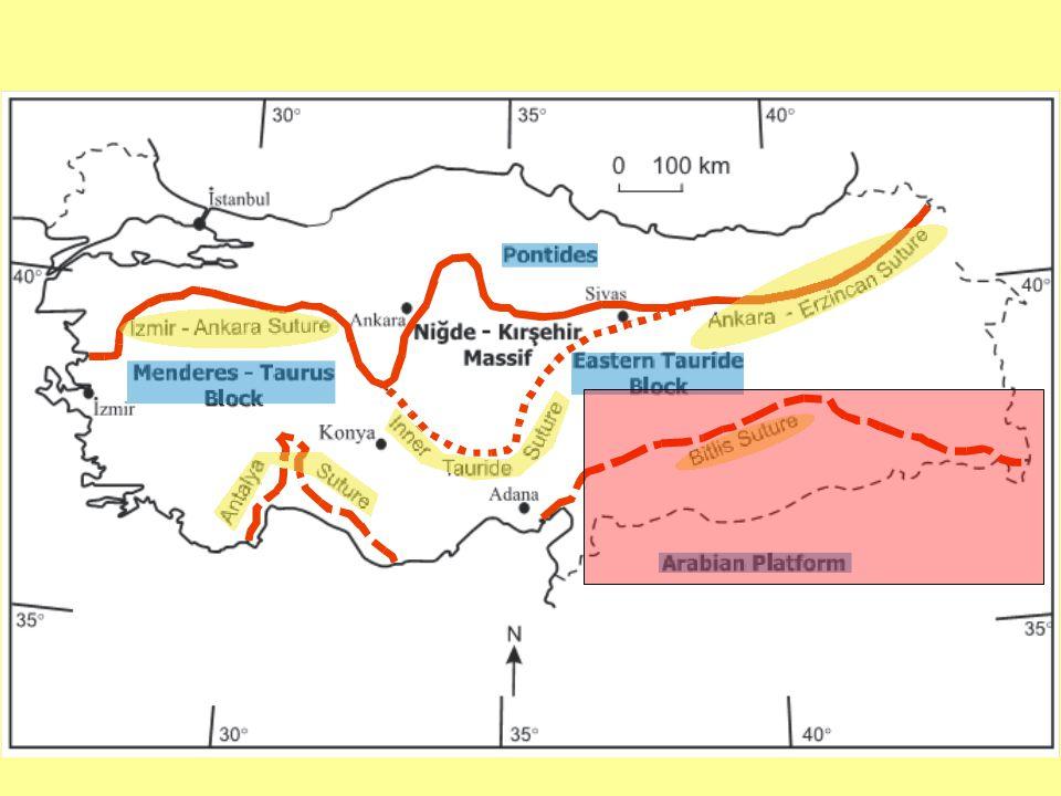 Güneydoğu Anadolu Orojenik Kuşağı'nda yer alan volkanosedimanter birimler Nap zonu ve Ekay zonu içerisinde, Geç Kretase – Geç Oligosen aralığında Neotetis'in kuzeye doğru dalmasına bağlı olarak çeşitli ada yayı volkanitleri ve ilişkili birimler gelişmiştir.