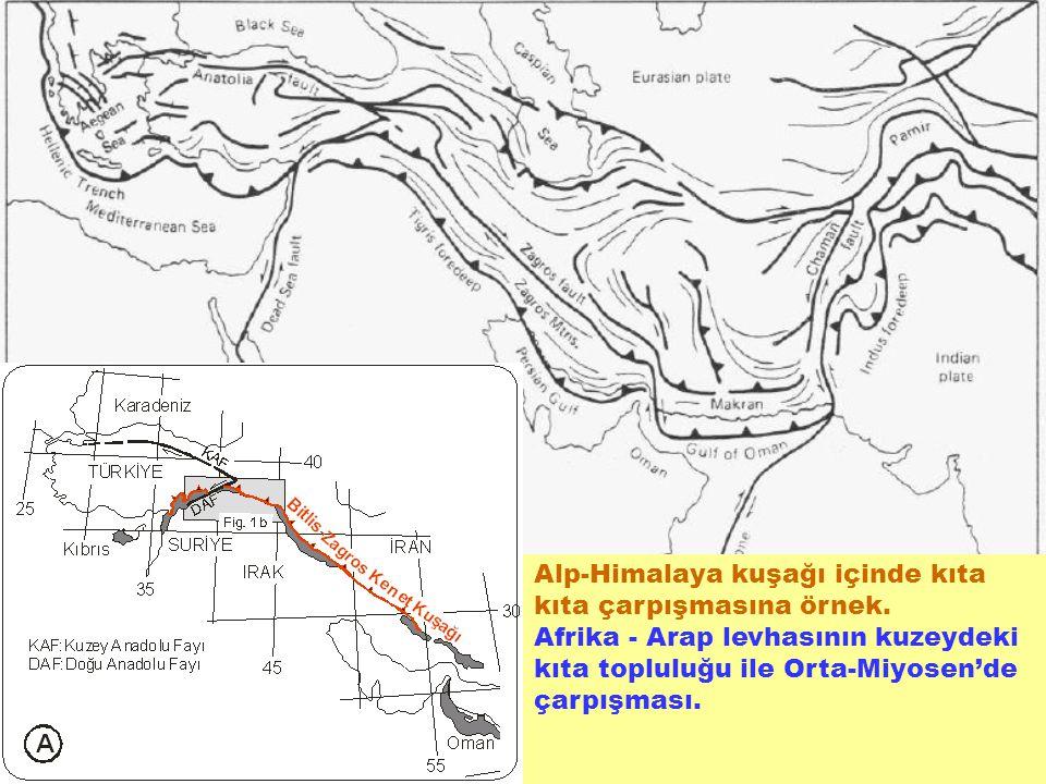 Alp-Himalaya kuşağı içinde kıta kıta çarpışmasına örnek. Afrika - Arap levhasının kuzeydeki kıta topluluğu ile Orta-Miyosen'de çarpışması.